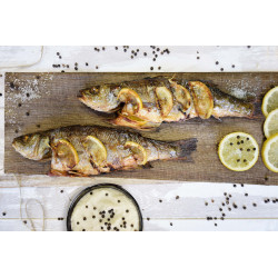 Sea bass front
